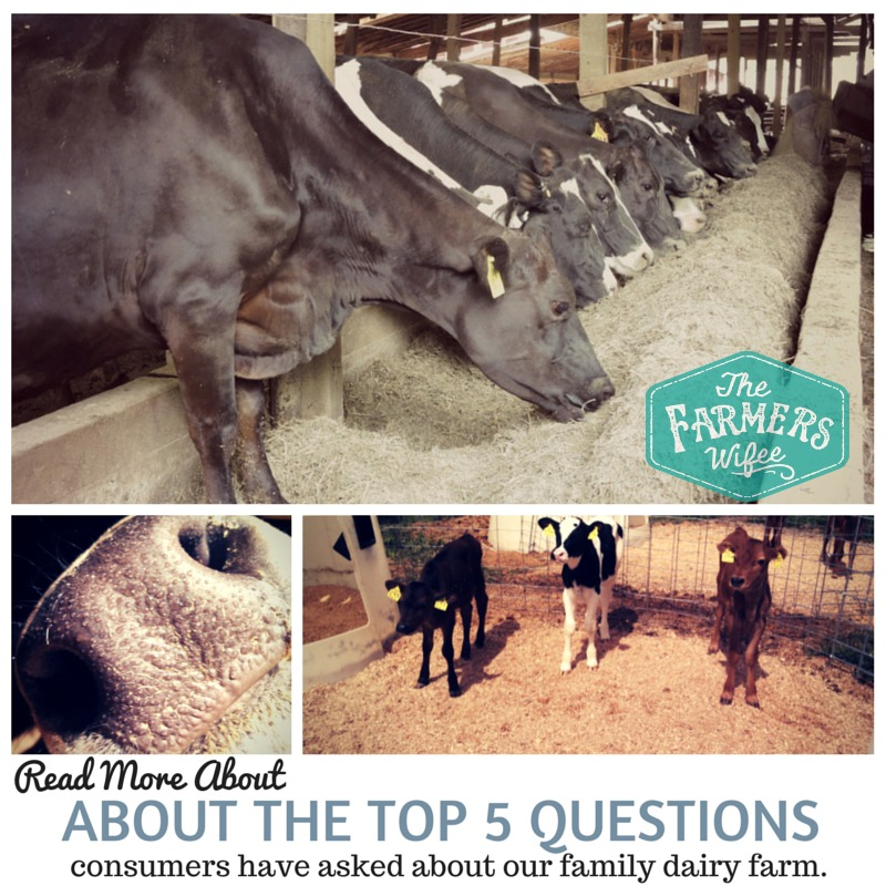 Top 5 Concerns Consumers Have About Our Farm