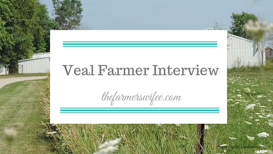 Veal Farmer Interview